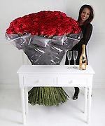 Violets are blue, roses are....how much!<br /> <br /> An online florist has unveiled this year's most extravagant Valentine's bouquet – a bunch of roses costing £10,000.<br />  <br /> These are not just any roses, however. They are grown 2,800 metres above sea level amid the mountains of Ecuador and stand five feet tall.<br />  <br /> For £10,000, you get 1,000 of the blooms, each one with an average of 60 petals that are renowned for their soft, velvety, rounded appearance. <br />  <br /> For good measure, ArenaFlowers.com, the online florist selling the giant-sized bouquet, throws in an iPad and bottle of Louis Roederer Cristal champagne.<br />  <br /> The flowers are part of a range of gifts for Valentine's Day called One of a Kind which launches today.<br /> <br /> Photo shows: 1000 of The World's Largest Roses, Cristal & iPad£10,000.00<br /> ©Exclusivepix Media