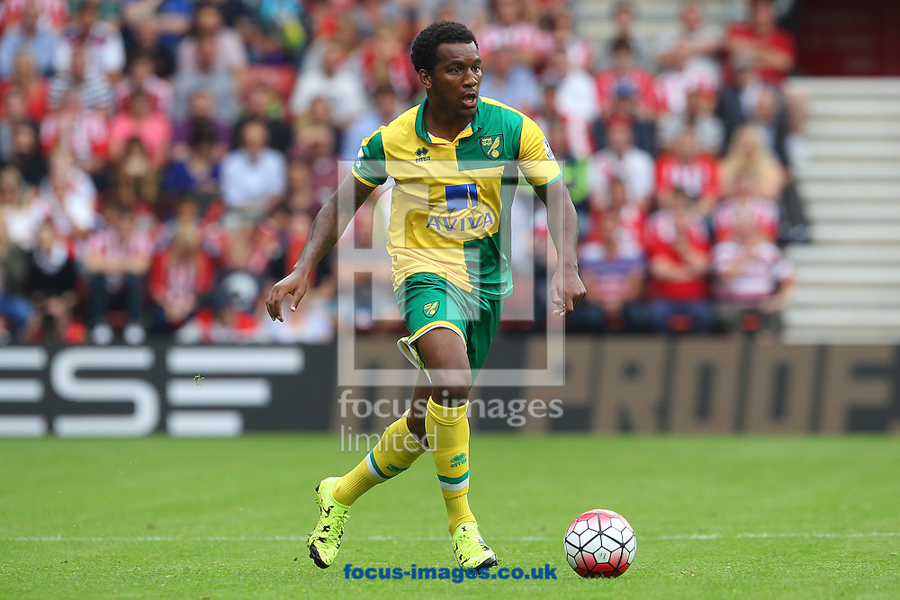 Andre Wisdom of Norwich in action during the Barclays Premier League match at the St Mary's Stadium, Southampton<br /> Picture by Paul Chesterton/Focus Images Ltd +44 7904 640267<br /> 30/08/2015
