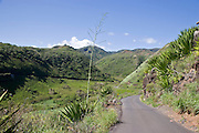 Road, West Maui, Hawaii<br />