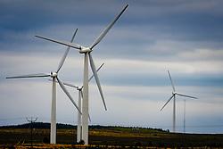 Wind turbines on the Black Law Wind Farm, South Lanarkshire, Scotland<br /> <br /> (c) Andrew Wilson | Edinburgh Elite media