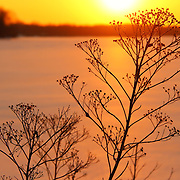 """Sun's Going Down on Me""<br />