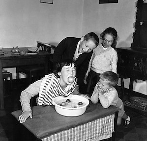 Children bobbing for apples at Halloween at Botanic Road, Glasnevin on the 28th of October 1960.