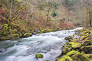 Rushing waters in Eagle Creek, Columbia River Gorge, Oregon