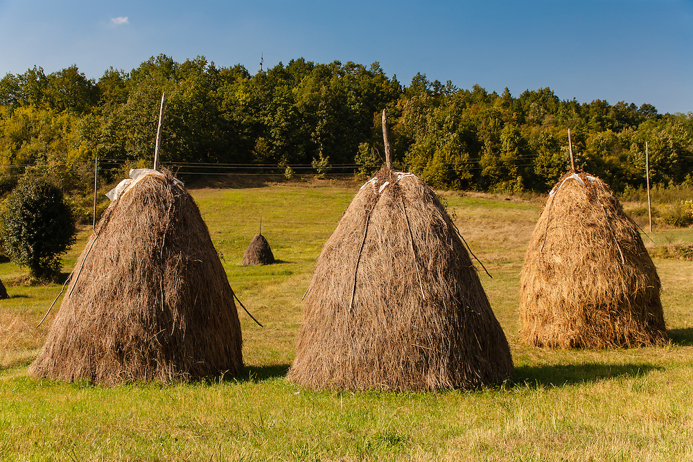 Hay stacks in the Serbian countryside around Leskovac.