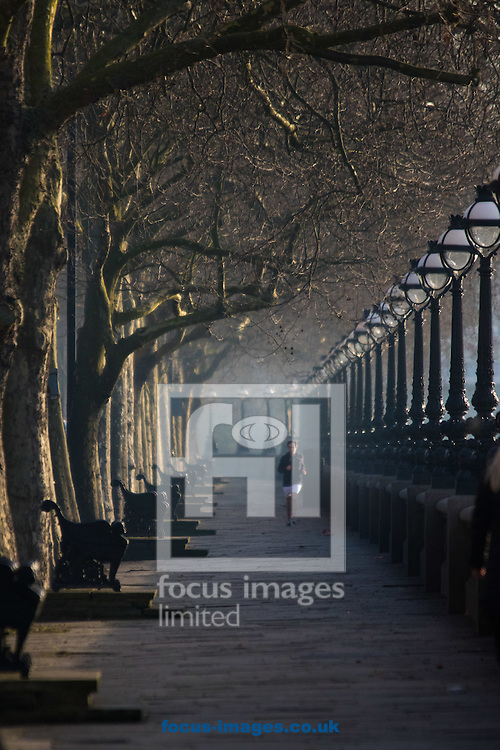 A runner makes his way through the early morning sunshine along the River Thames at Cheyne Walk, London <br /> Picture by Paul Davey/Focus Images Ltd +447966 016296<br /> 24/02/2016