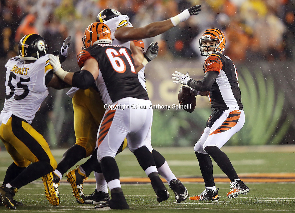 Cincinnati Bengals quarterback AJ McCarron (5) hangs in the pocket and throws a pass despite pressure from Pittsburgh Steelers outside linebacker Arthur Moats (55) and Pittsburgh Steelers defensive end Stephon Tuitt (91) during the NFL AFC Wild Card playoff football game against the Pittsburgh Steelers on Saturday, Jan. 9, 2016 in Cincinnati. The Steelers won the game 18-16. (©Paul Anthony Spinelli)