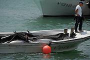 Spanje, Barbate, 8-5-2010Een vissersboot lost haar zojuist gevangen blauwvin tonijn in de haven van Barbate. De vis wordt gewogen en een Japanse handelaar, met hoed en rode overall, keurt de vis, die direct in de visverwerkingsfabiek wordt getakeld waar hij gezaagd en in stukken gesneden wordt, klaar om naar Japan vervoerd te worden en als sushi te eindigen. Deze tonijnen wegen gemiddeld 200 kilo. Het is een nieuwe en moderne faciliteit, en de vissersboot is van dezelfde firma, Frialba. Spaanse vissers vissen tonijn op de traditionele manier van de Almadraba. Tonijnvisserij met de Madrague, een groot net met verschillende kamers, wordt gebruikt om tonijn te vangen op hun weg van de Atlantische Oceaan in de warmere Middellandse Zee. Zodra de school vissen is waargenomen, trekken de vissers de netten omhoog rond de zogenaamde kamer van de dood.Spanish fishing Tuna the traditional way of the Almadraba, and then Japanese buyers buy and prepare the tuna for the Japanese market. Tuna fishing with the madrague, a vast net with various chambers, used to catch tunas on their way from the Atlantic Ocean into the warmer Mediterranean. Once the shoal of fish has been sighted, fishermen pull up the nets around the so-called chamber of death.Foto: Flip Franssen/Hollandse Hoogte