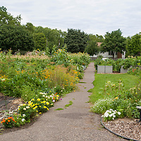 The Dowling Community Garden