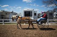 2013-4-20-Midwest Horse Fair