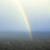 Atlantic Rainbow in misty light, County Kerry, Ireland / rb005