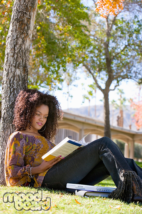 Student Studying Outside Under Tree