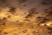 gold clouds at sunset