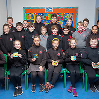 Ennis National School Mr Corry's Class (Colourful Coasters)