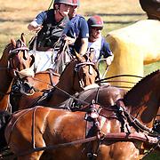 2010 Alltech FEI World Equestrian Games