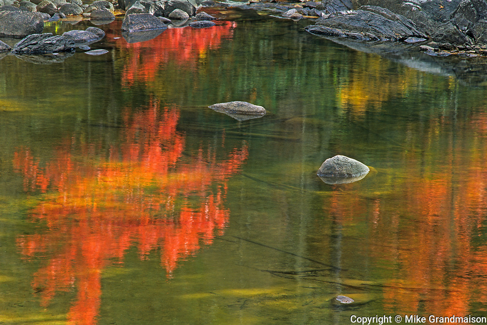 Autumn reflection in Dryberry Creek<br />