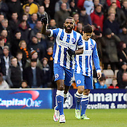 Darren Bent scores and celebrates during the Sky Bet Championship match between Wolverhampton Wanderers and Brighton and Hove Albion at Molineux, Wolverhampton, England on 20 December 2014.