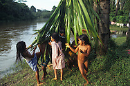 Children playing with a palm branch