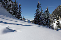 first winter snow  Ammergauer Alps  Germany