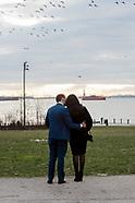 Evan & Diana Proposal