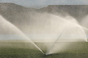 Reclaimed water is used to irrigate a golf course in the Sonoran Desert in Green Valley, Arizona, USA, at the base of the Santa Rita Mountains of the Coronado National Forest.