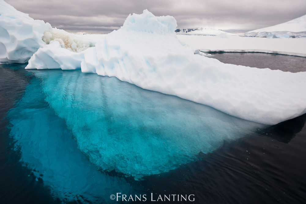 Iceberg with underwater portion showing in clear water, Antarctica