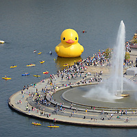 "The first U.S. version of the 40-foot-tall rubber duck floats next to the fountain at "" The Point""  where the confluence of the Monongahela and Allegheny Rivers becomes the Ohio River on September, 29, 2013 in Pittsburgh.  The Rubber Buck Project, is the creation of artist  Florentijun Hofman of the Netherlands and is part of the Pittsburgh Cultural Trust International Festivals of First.  UPI/Archie Carpenter"