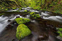 Gorton Creek flows around moss covered rocks in the Columbia River Gorge of Oregon.