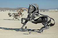 Iron Horses Galore by: Adrian Landon from: NEW YORK, NY year: 2018 My Burning Man 2018 Photos:<br />