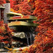 &quot;Fallingwater Autumn Painterly&quot;<br /> <br /> Bright and vibrant autumn painting of Fallingwater!