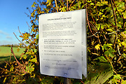 © Licensed to London News Pictures. 07/11/2012. LAWSHALL, UK A sign warning walkers of the disease. Trees at an infected site in East Anglia today, 7th Novemember 2012. UK ash trees are threatened by the spread of Chalara disease, more commonly known as Ash Dieback. Photo credit : Stephen Simpson/LNP