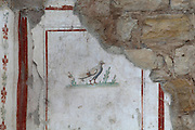 Fresco from a Terrace House on Bulbul Hill, opposite the Temple of Hadrian, Ephesus, Izmir, Turkey. Here we see a bird, possibly a dove. These houses are also called the houses of the rich and were built according to the Hippodamian plan of the city in which roads transected each other at right angles. There are 6 residential units on 3 terraces at the lower end of the slope. The oldest building dates to the 1st century BC and continued in use as a residence until the 7th century AD. Ephesus was an ancient Greek city founded in the 10th century BC, and later a major Roman city, on the Ionian coast near present day Selcuk. Picture by Manuel Cohen