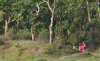 Nepalese women walking home along a forest path, Chitwan National Park, Nepal