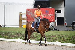 Dossin Julie, (BEL), First Lady 263<br /> Small Final 6 years old horses<br /> World Championship Young Dressage Horses - Verden 2015<br /> © Hippo Foto - Dirk Caremans<br /> 08/08/15