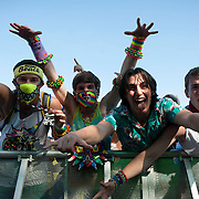 May 17, 2013 - Queens, NY :  Foreground from left, T.J. Curtin, Nathan Alexander, Lucas Niglio, and Luke Walsh mug for the camera during the first day of the 2013 New York 'Electric Daisy Carnival,' an electronic dance music festival, at Citi Field in Queens, on Friday. CREDIT: Karsten Moran for The New York Times CREDIT: Karsten Moran for The New York Times
