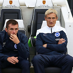 Brighton & Hove Albion's Manager Sami Hypia during the English Capital One Cup 1st Round between Brighton & Hove Albion FC and Cheltenham Town FC at the American Express Community Stadium, Brighton, 12th August 2014 © Phil Duncan | SportPix.org.uk