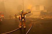 LAKEVIEW TERRACE, CA - Los Angeles firefighters try to contain the Creek Fire as it moves into a neighborhood in Lakeview Terrace, December 5, 2017.