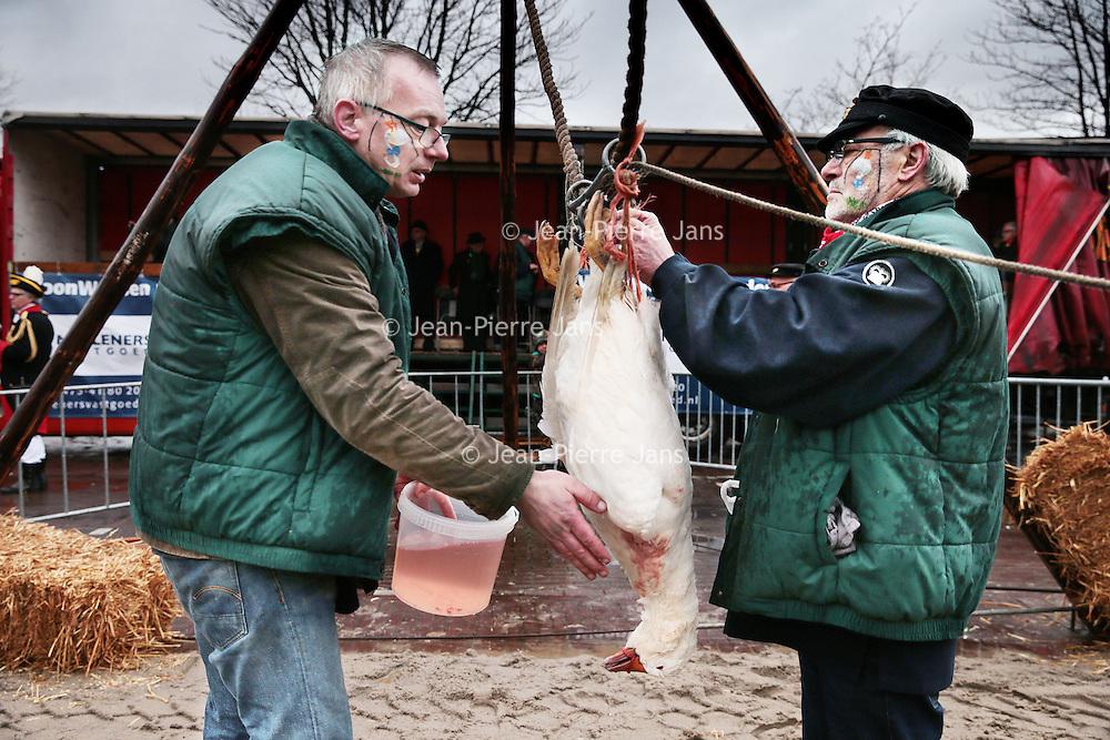 Nederland, Gevenbricht, 9 februari 2016.<br /> Voorbereidingen voor het volksfeest Ganstrekken in Grevenbicht.<br /> Eerst worden er ganzen getekend op de gezichten van de dorpsbewoners.<br /> Op de foto: de gans wordt geprepareerd om te worden opgehangen.<br /> <br /> Preparations for Ganstrekken or Goose pulling  using a dead goose as part of the traditional Shrove Tuesday celebrations. First, geese are painted on the faces of the villagers. On this photo a goose is prepared in order to be hung. <br /> <br /> Foto: Jean-Pierre Jans