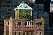 New York. Elvvated view. penhouse with a garden on a rooftop /  toit terrasse vert