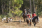 Riders follow the hounds during the first hunt of the season at Middleton Place Plantation November 27, 2016 in Charleston, SC. Fox hunting in Charleston is a drag hunt using a scented cloth to simulate a fox and no animals are injured.
