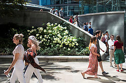 © Licensed to London News Pictures. 02/08/2018. London, UK. People make their way past colourful flowers at lunch time in in Paddington Basin in London on a hot summers day. Another heatwave is expected to hit parts of the UK with record temperatures expected in parts of Europe. Photo credit: Ben Cawthra/LNP