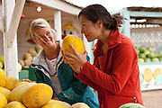 Kate Harvey & Jennifer White shop for summer melons at a local family-owned fruit stand in Green River Utah.