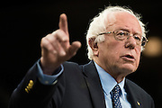 Democratic presidential candidate Sen. Bernie Sanders speaks during a campaign rally on February 28, 2016 in Oklahoma City, Oklahoma.  (Cooper Neill for The New York Times)