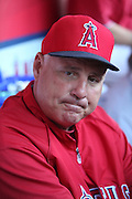ANAHEIM, CA - MAY 21:  Manager Mike Scioscia #14 of the Los Angeles Angels of Anaheim talks to the media before the game against the Houston Astros at Angel Stadium on Wednesday, May 21, 2014 in Anaheim, California. The Angels won the game 2-1. (Photo by Paul Spinelli/MLB Photos via Getty Images) *** Local Caption *** Mike Scioscia