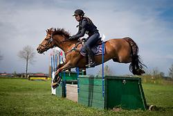 Cools Evelien, (BEL), Joly's Dusty<br /> Nationale Finale AVEVE Eventing Cup Paarden <br /> Minderhout 2016<br /> © Hippo Foto - Dirk Caremans<br /> 24/04/16