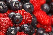 USA, Oregon, Keizer, blueberry/raspberry mix for pie.