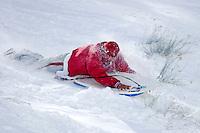 Sledding on Fresh Snow, Mount Baldy, California