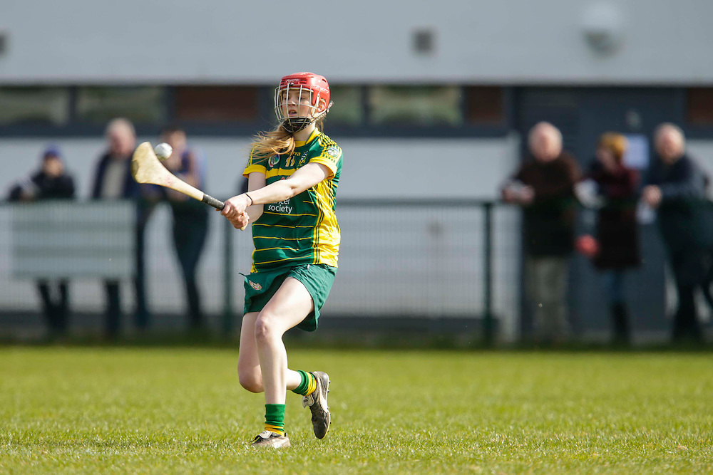 National Camogie League Division 2 at Trim, 20th March 2016<br /> Meath vs Galway<br /> Aoife Minogue in action for Meath<br /> Photo: David Mullen /www.cyberimages.net / 2016