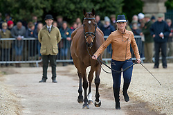 Power Elizabeth, (IRL), September Bliss<br /> First Horse Inspection - Mitsubishi Motors Badminton Horse Trials <br /> Badminton 2015