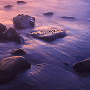 Low Tide Exposed Rocks - Dusk - Pfeiffer State Beach - Big Sur, CA