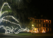 Jekyll Island Historic District at Christmas. Giant Oaks decorated with white Christmas lights.